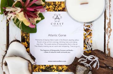 Atlantic Gorse